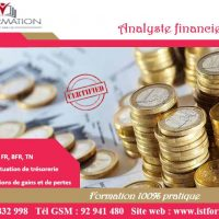IST Formation Tunisie - Analyste financier